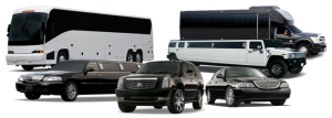 Party Buses and Limos